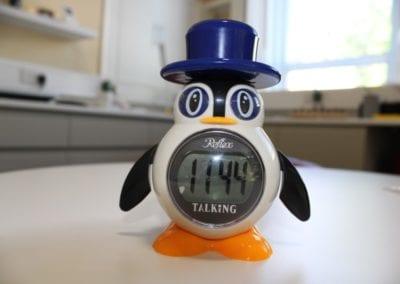 Penguin Talking Clock